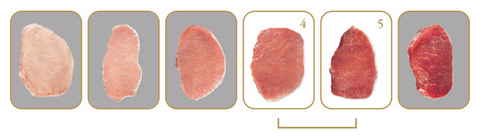 Chairman's Reserve Prime Pork Color Standards